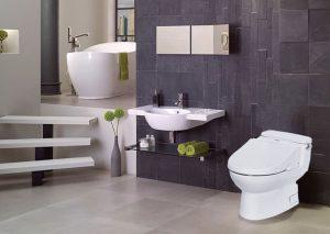thiết kế toilet đẹp mê ly 0316