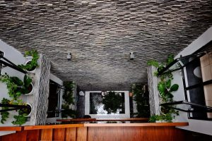Mẫu thiết kế giếng trời trên cầu thang 1