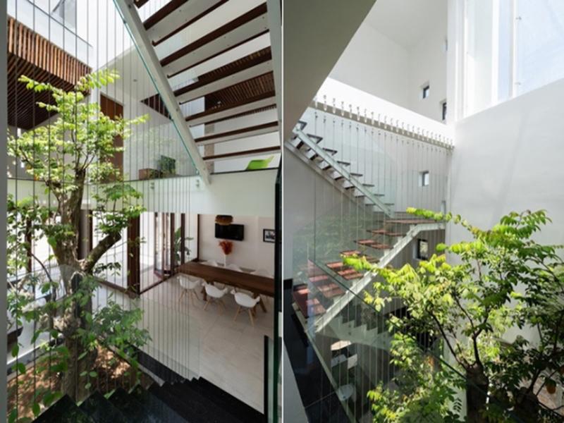 Mẫu thiết kế giếng trời trên cầu thang 2