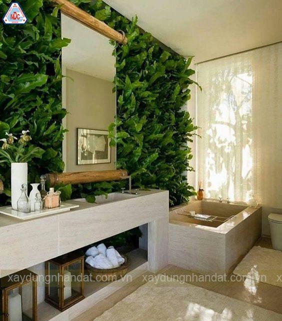 Mẹo trang trí cây xanh trong phòng tắm