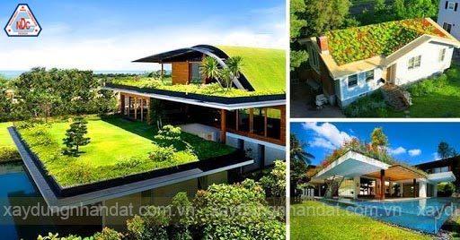 ý tưởng thiết kế vườn trên mái nhà